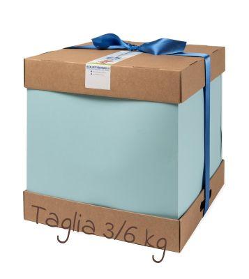 LA TORTA DI PANNOLINI BOY TAGLIA 2 - 3/6 Kg