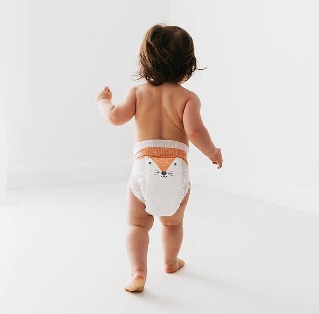 pannolini diapers maxi kit & kin
