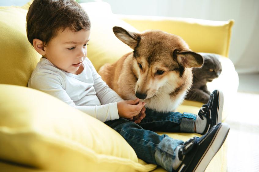 bambini e cuccioli di cane