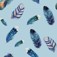 kolorky pannolini design piume